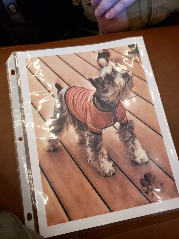 A photo of Gandalf the dog wearing a Starfleet uniform, with a paw print signature at the bottom right corner.