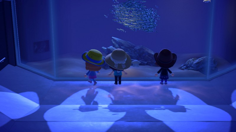 Screenshot of people in Animal Crossing looking at an aquarium full of fish. Visiting the museum in Animal Crossing is something fun to do while staying at home!